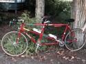 Tandem Bike Custom Built by Bill Davidson