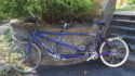 daVinci In-2-ition tandem, medium, low mileage